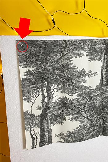 Fotografiere deshalb mit einer Styroporplatte Foto Hack