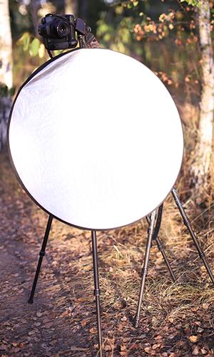 Brennweite in der Porträt-Fotografie Reflektor